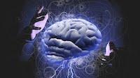 Мозг, как средство самовыноса